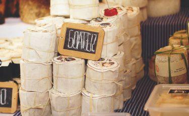Wine & Cheese Festival